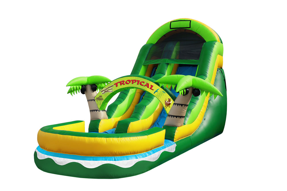 Coconut Palm Slide  19' Bounce House Waterslide WET or DRY image - Jacksonville, FL