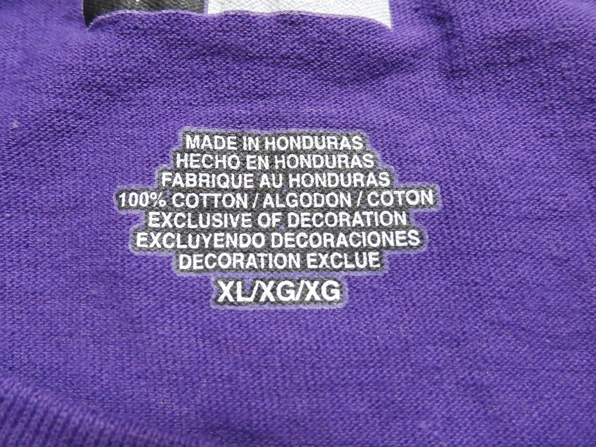 Minnesota Vikings Shirt | Recycled ActiveWear ~ FREE